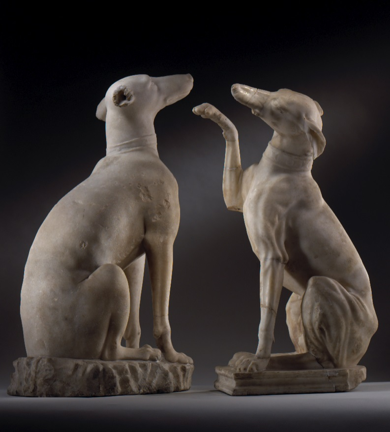 Export stop on £2m Roman hounds
